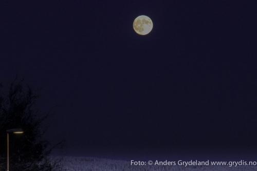 julestemning_2012-028