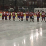 ishockey-norge-sverige-3