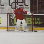 ishockey-norge-sverige-72