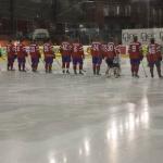 ishockey-norge-sverige-3_0