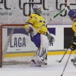 ishockey-norge-sverige-80_0
